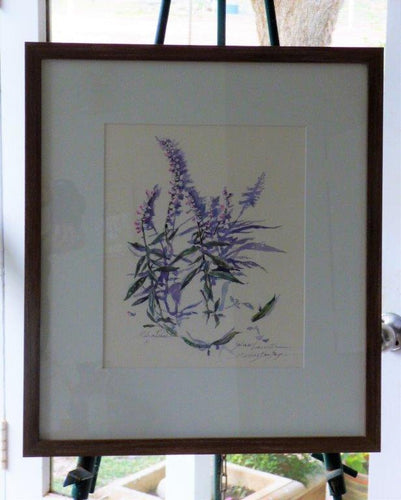 Salvia - SOLD