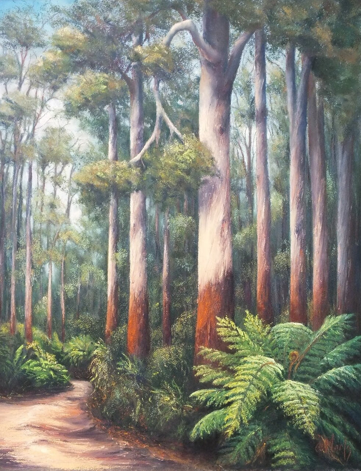 """Otway Tall Timber I"" - Limited Edition Fine Art Reproductions Only"