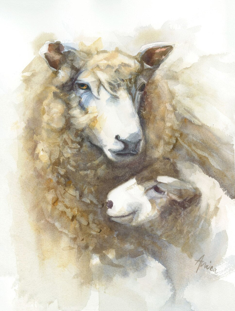 watercolour sheep painting of mother ewe and baby lamb