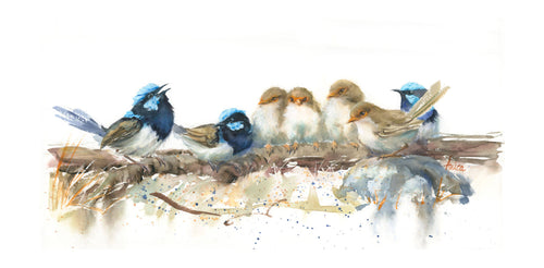 Family of Suberb Wrens on a Log - Limited Edition Prints
