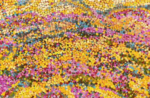 As far as the eye can see - WA wildflowers