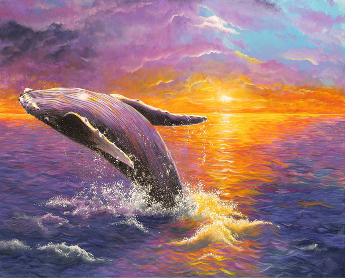 Sunset with humpback whale seascape