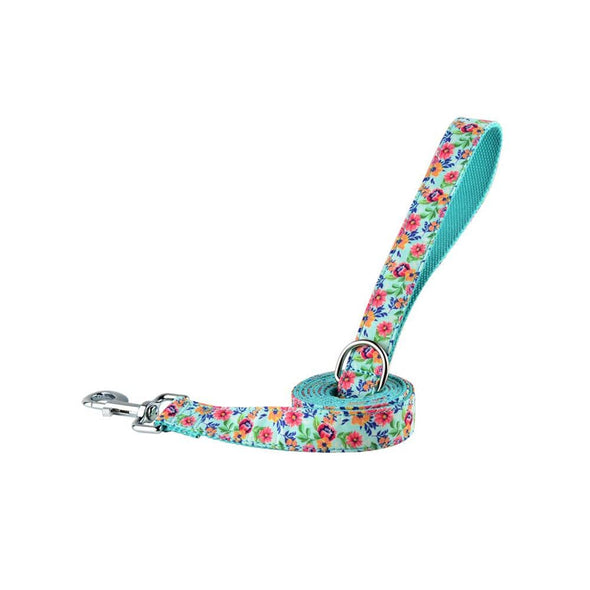 Pet Leash - Turquoise