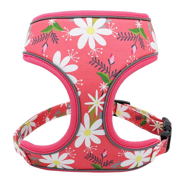 Dog Harness - Stephanotis