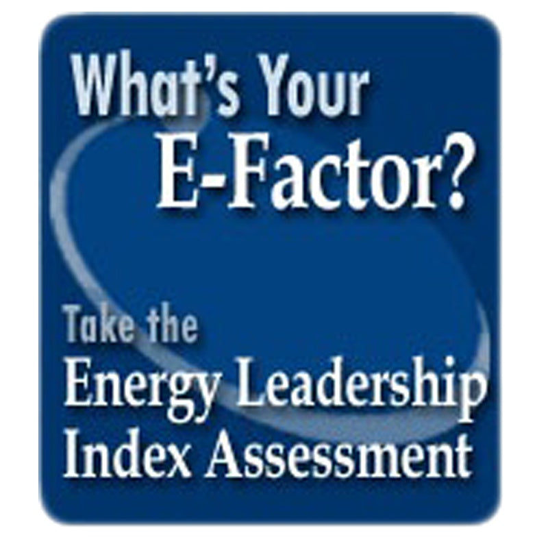 Energy Leadership Index Assessment & Debrief