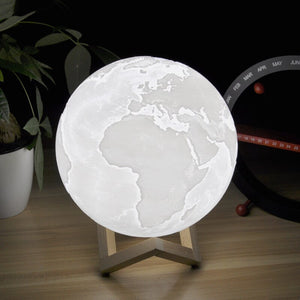 Zen Earth Lamp