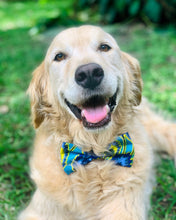 Load image into Gallery viewer, Medium Dog Bow Ties