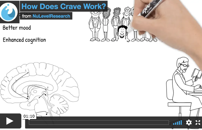 What is Crave by NuLevel Research Doing in the Brain?