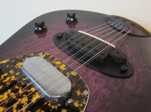 Versoul Caspian Electric Acoustic 12 Sitar
