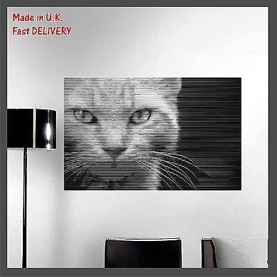 CAT - Kitten Animal - Photo CUT Technology - Vinyl Wall Art Sticker Decal Decor