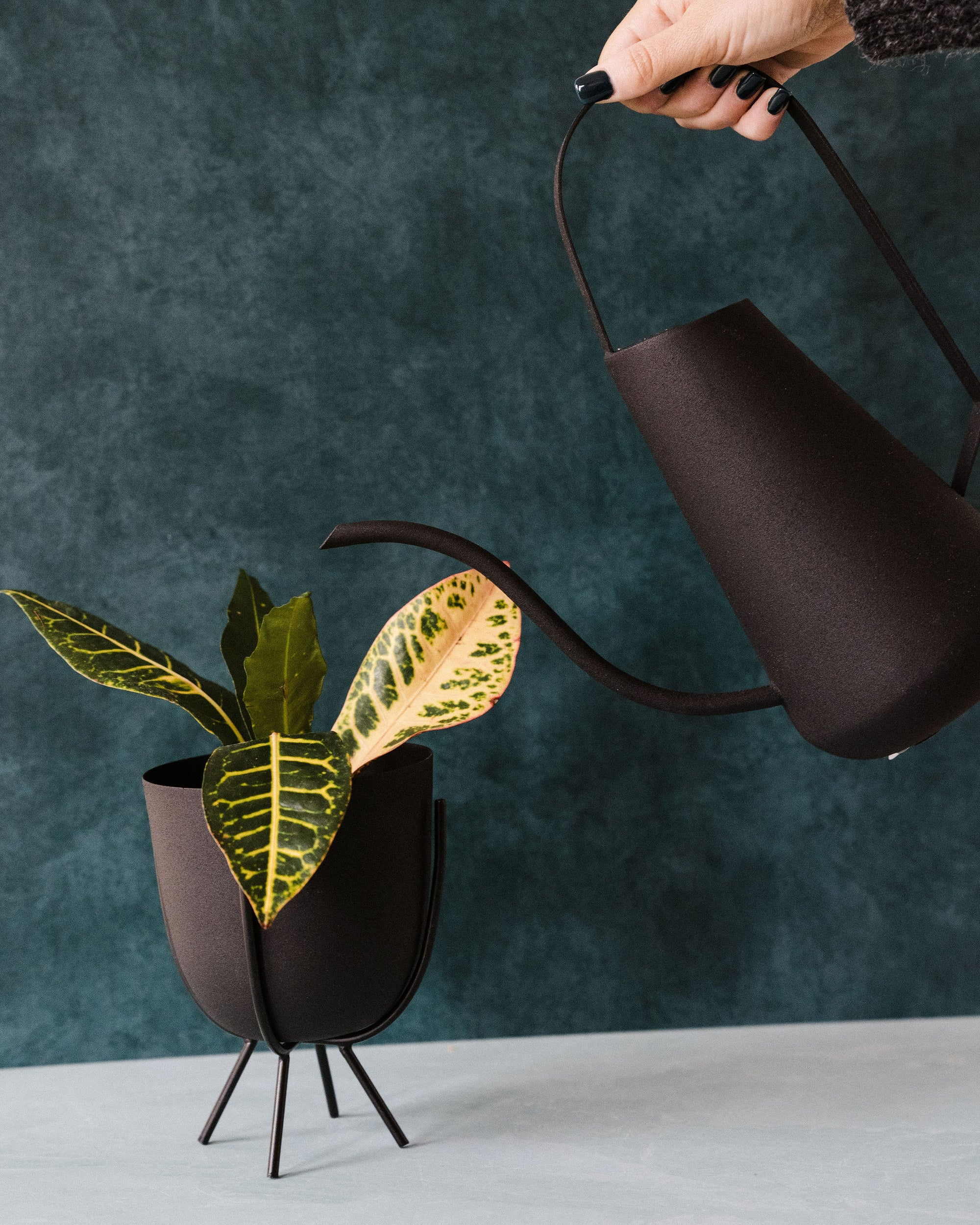 Matte Black Planters With Stands