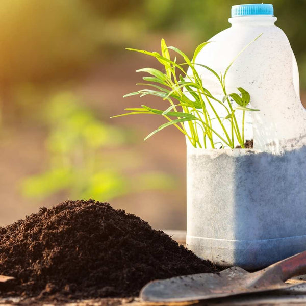 Plastic_Bottle_Protected_Seed_Pot - Green_Bee
