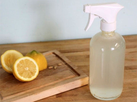 Homemade Organic Glass Cleaner - Momma's Best Homemade, LLC