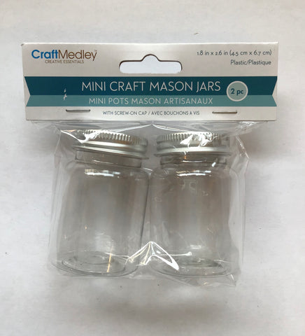 Mini Craft Mason Jars, 2 pk
