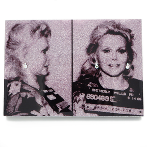 Zsa Zsa Gabor mug shot wall art plaque