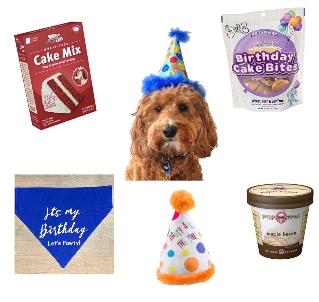 Doggie Birthday Wag Box