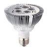 PAR30 LED Replacement Bulb - 5W