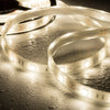waterproof IP68 submersible LED strip light