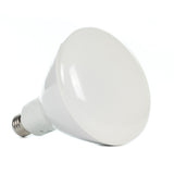R40 LED Replacement Bulb for Swimming Pool and Fountain Lights - 16.5W (equal to 85W)