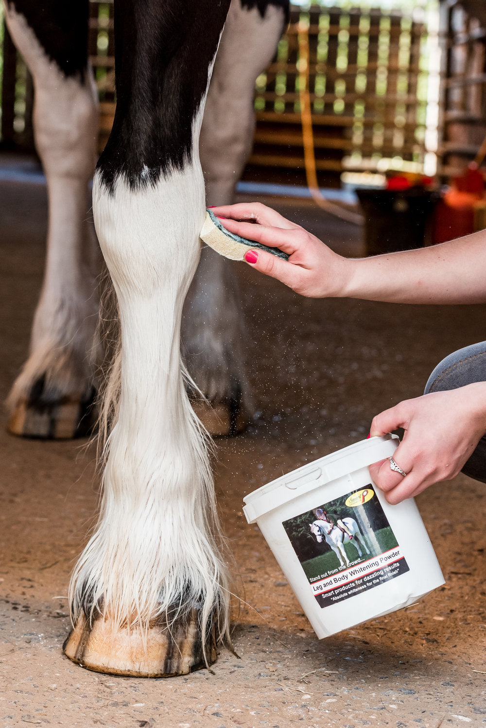 Smart Grooming Leg and Body whitener powder being applied to damp legs to accentuate whiteness. applied