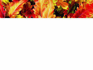 free-autumn-leaves-powerpoint-template