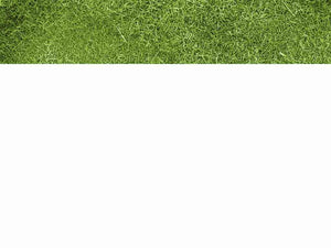 free-green-grass-powerpoint-template