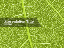 Load image into Gallery viewer, free-green-leaf-PPT-template