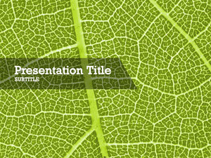 free-green-leaf-PPT-template