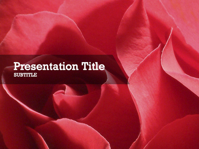 free-valentines-flowers-PPT-template