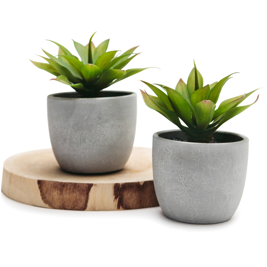 Set Of 2 Artificial Agave Succulent Plant In Rustic Pots 6 High Kurrajong Farmhouse Usa