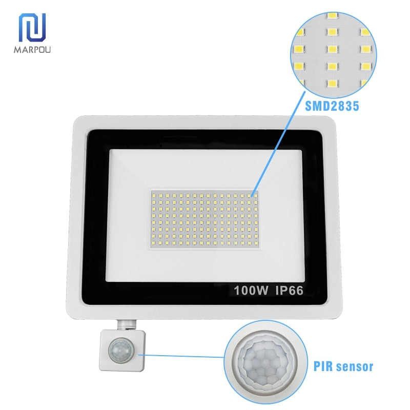 Reflector Floodlight Motion Sensor LED Floodlight