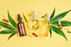 Things you need to Know About CBD Tincture
