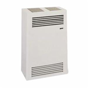 WALL FURNACE- WITH INSTALATION - Cozy CDV155B