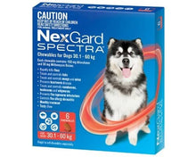 Load image into Gallery viewer, Nexgard Spectra For Dogs 30.1-60 kgs
