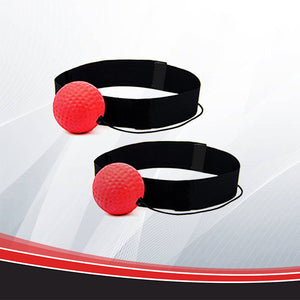 BoxPro Hand-Eye Coordination Training Ball