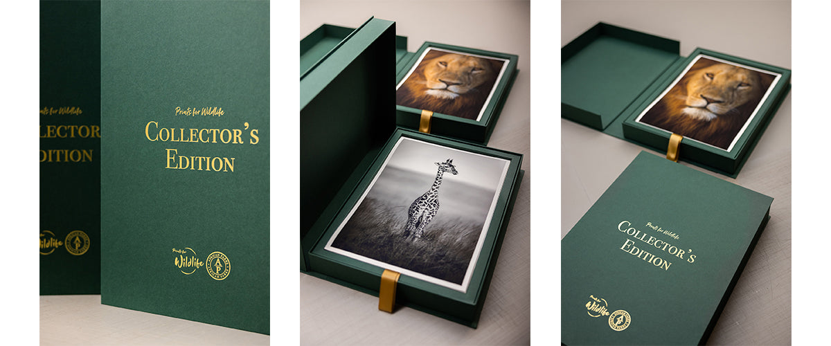 Prints for Wildlife Collector's Edition
