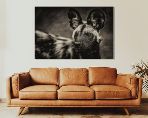 "African Wild Dog  "" Painted Wolf """