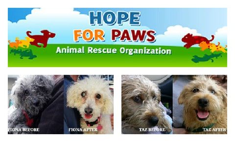 Hope For Paws Rescue