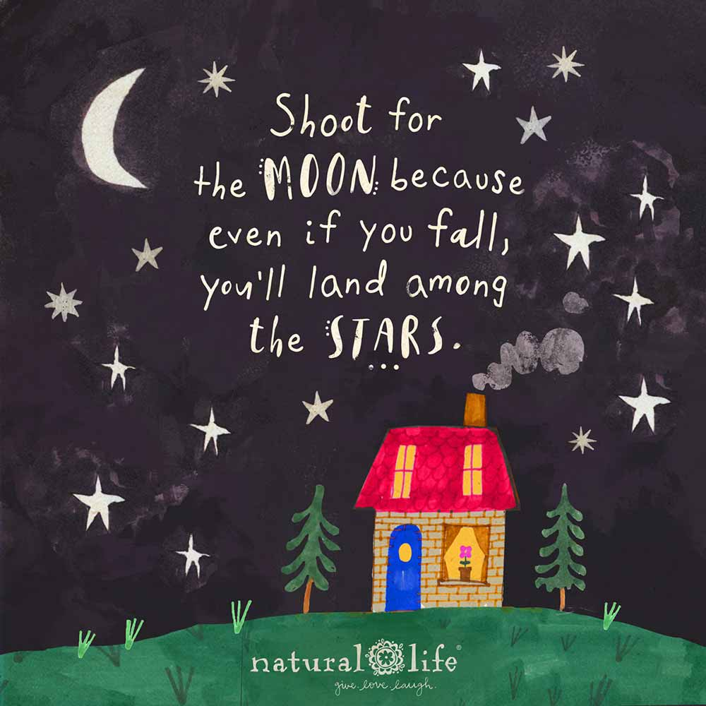 Shoot for the moon because even if you fall, you'll land among the stars