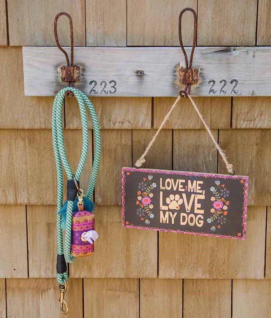 dog leash and dog sign