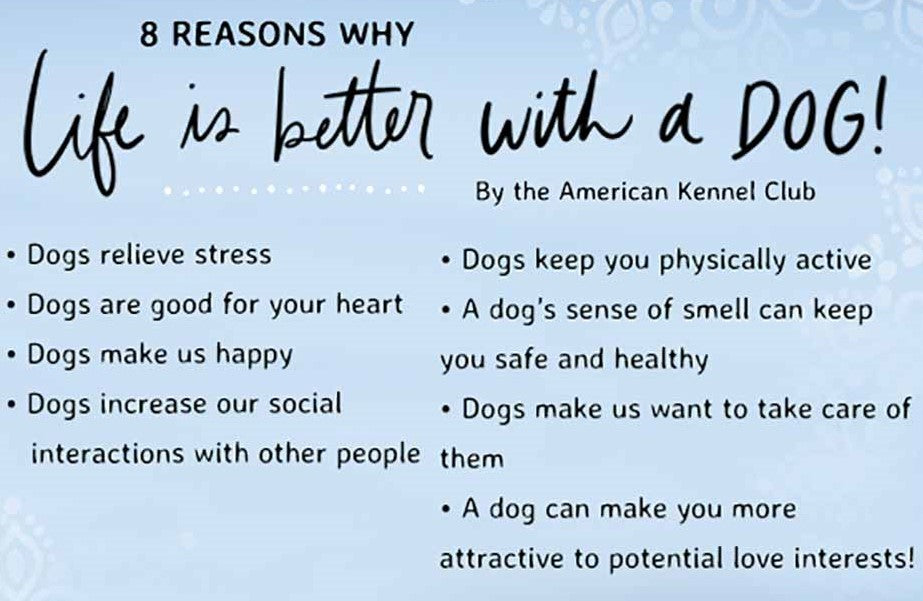 Life is better with a dog infographic