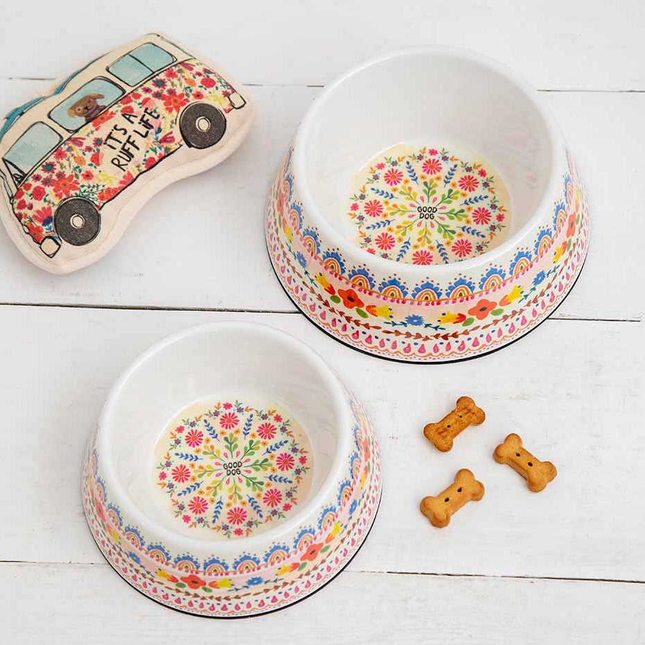 colorful Dog dishes