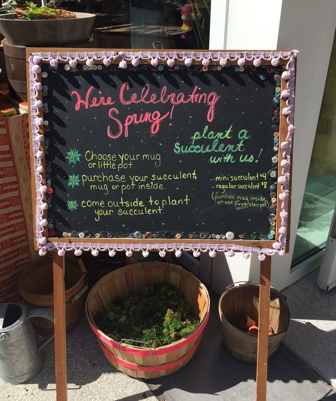 Plant a Succulent Party at the Natural Life Flagship Store
