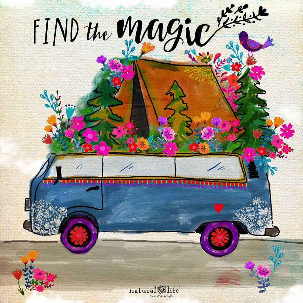 find the magic van camper graphic