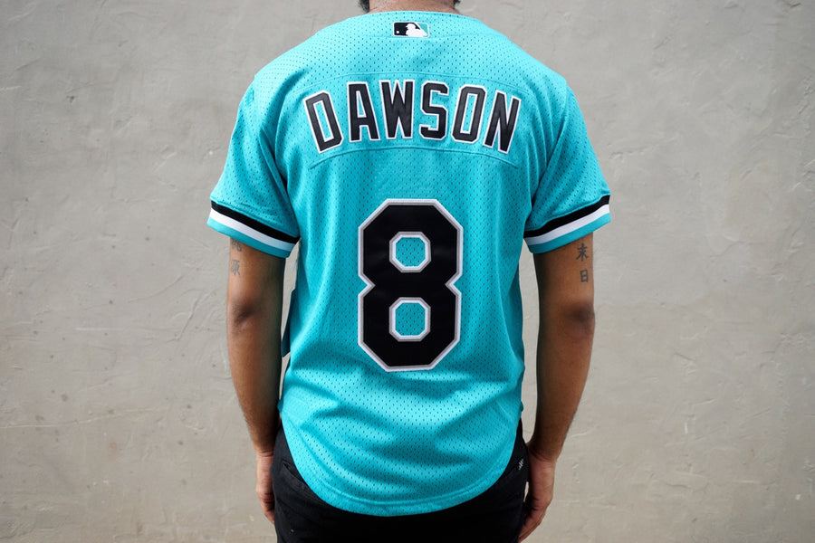 Mitchell & Ness Andre Dawson Florida Marlins BP Jersey