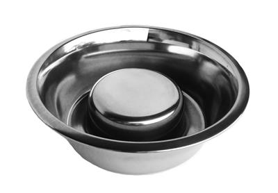 Not So Fast! Slow Feed Dog Bowl