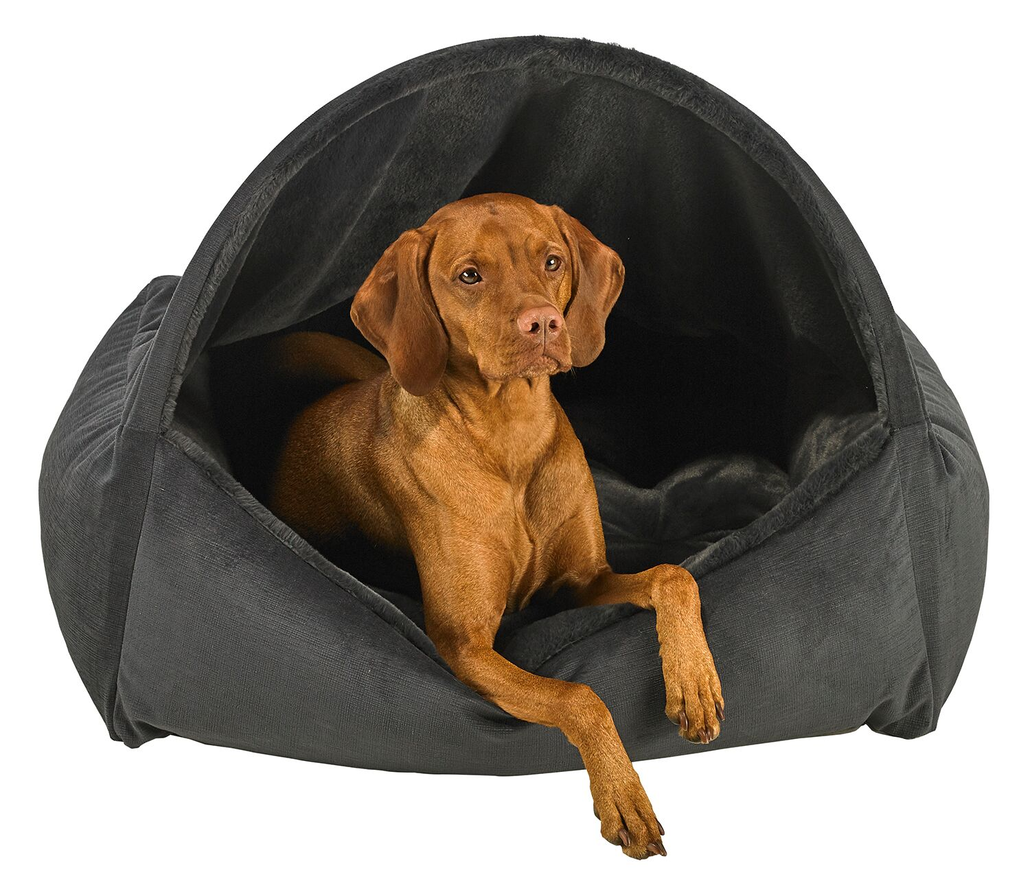 Picture of: Bowsers Dream Fur Canopy Bed Lucky Dog Pet Boutique