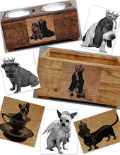 Load image into Gallery viewer, Bassett Hound, Beagle, Boston Terrier, Bull Dog and Bull Mastiff Feeders & Toy Boxes