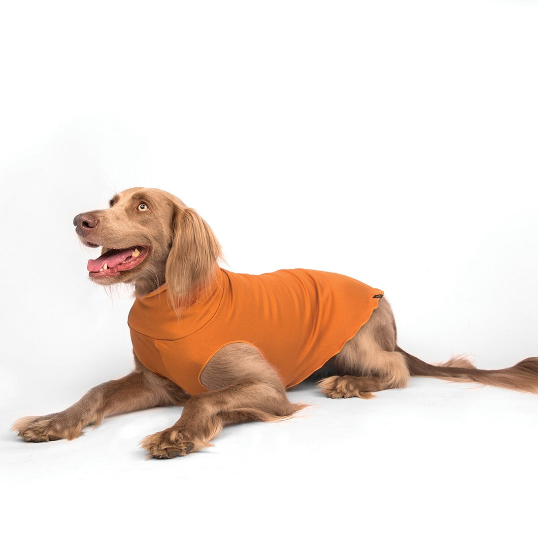 Gold Paw Sante Fe Pullover