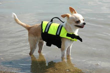 Load image into Gallery viewer, Paws Aboard Neon Yellow Doggie Life Jacket